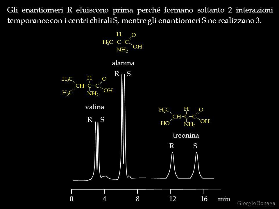 Gli enantiomeri R eluiscono prima perché formano soltanto 2 interazioni temporanee con i centri chirali S, mentre gli enantiomeri S ne realizzano 3.