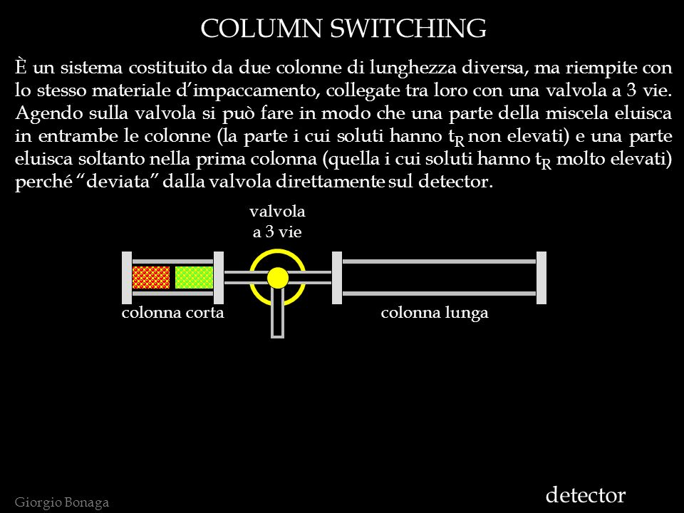 COLUMN SWITCHING detector