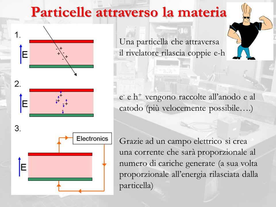 Particelle attraverso la materia