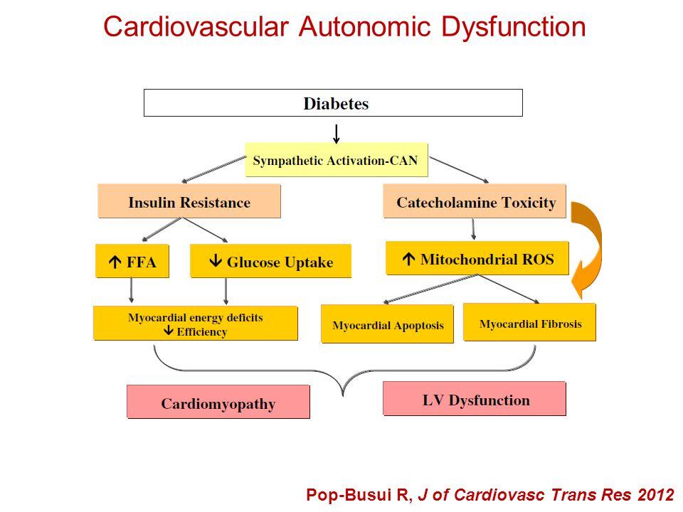 Cardiovascular Autonomic Dysfunction