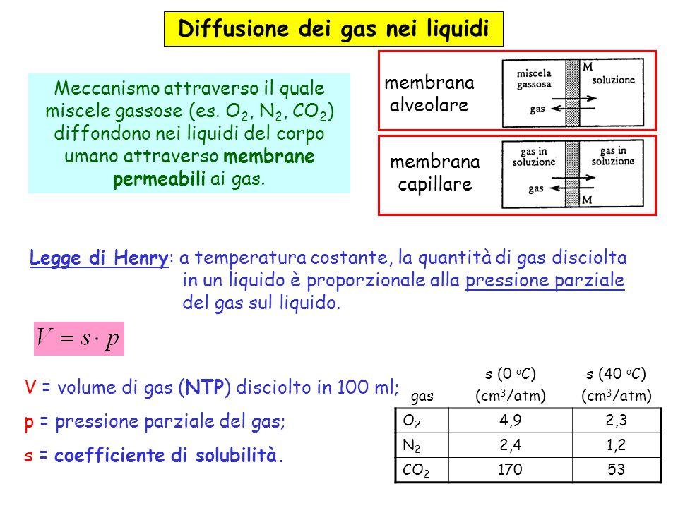 Diffusione dei gas nei liquidi