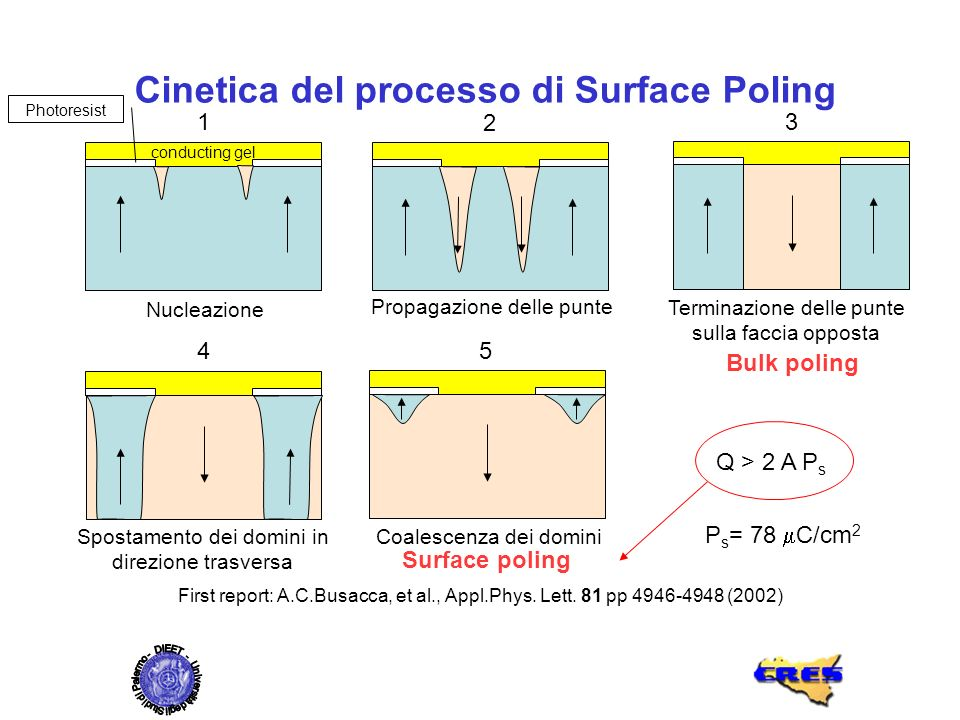 Cinetica del processo di Surface Poling