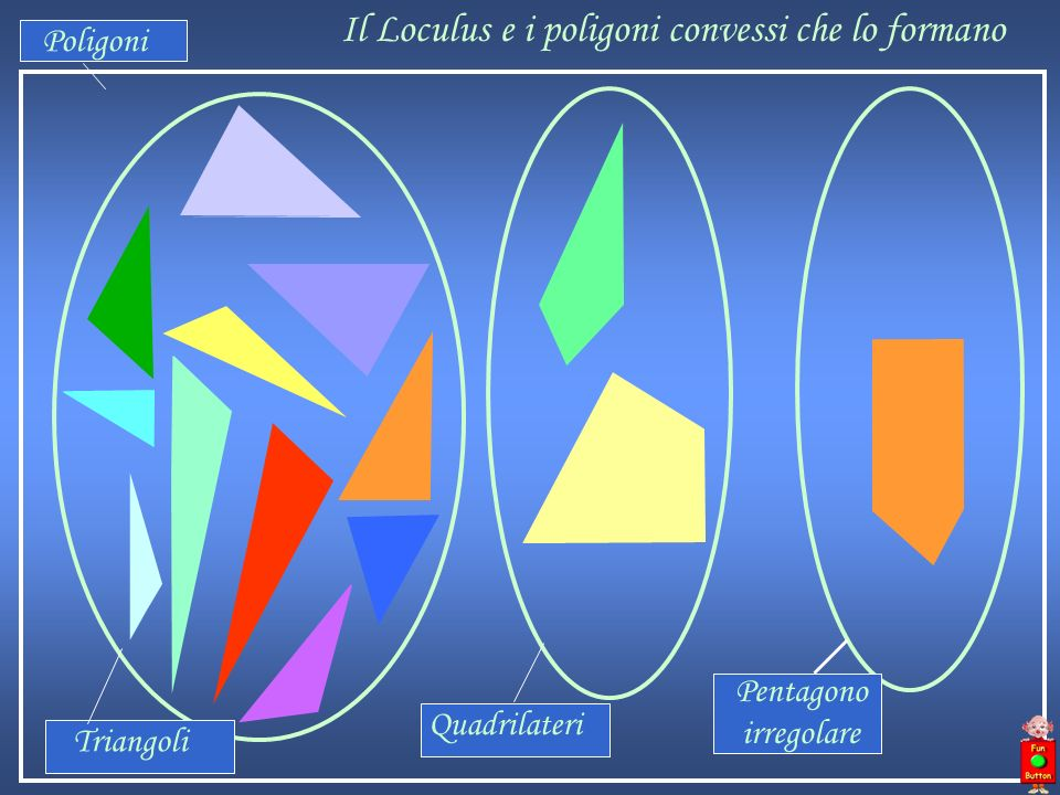 Il Loculus e i poligoni convessi che lo formano