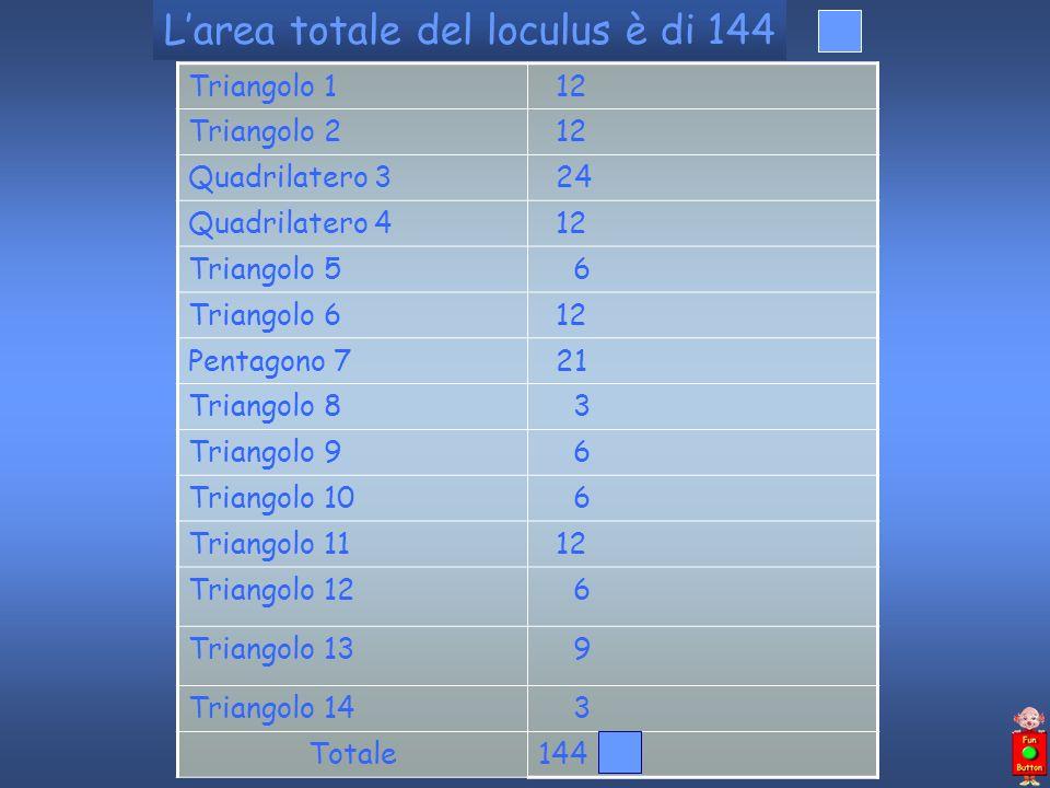 L'area totale del loculus è di 144