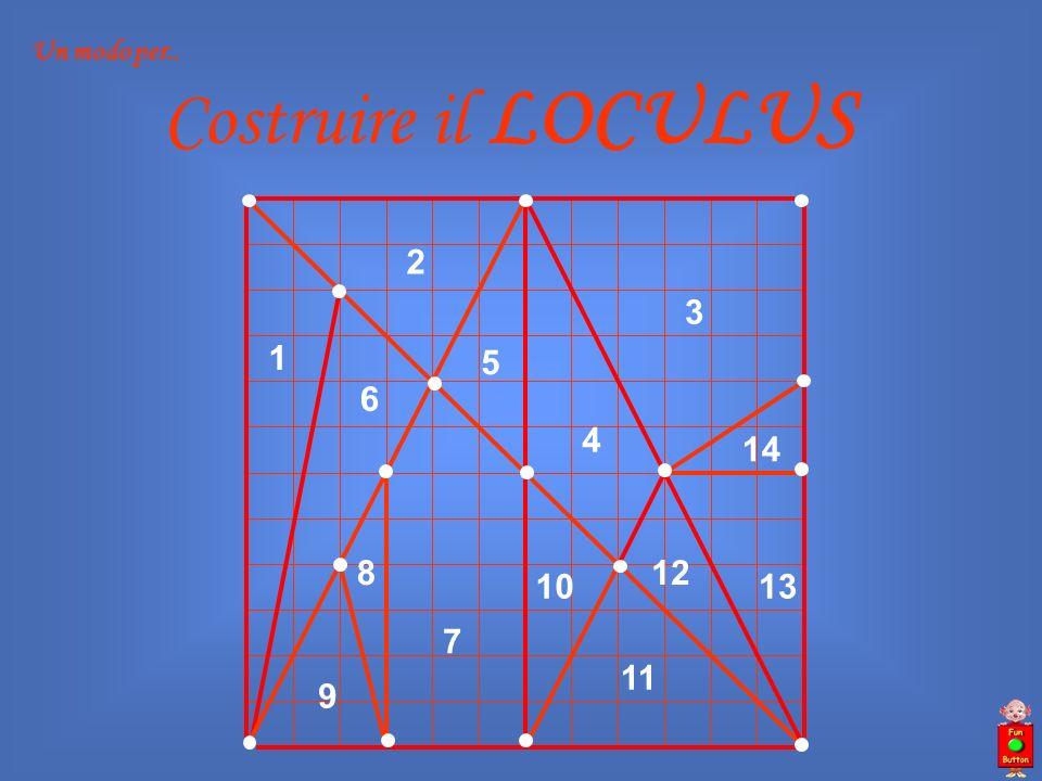 Un modo per.. Costruire il LOCULUS 1 2 3 4 5 6 7 8 9 10 11 12 13 14
