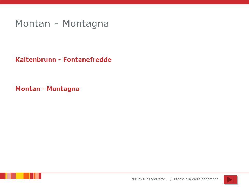 Montan - Montagna Kaltenbrunn - Fontanefredde Montan - Montagna