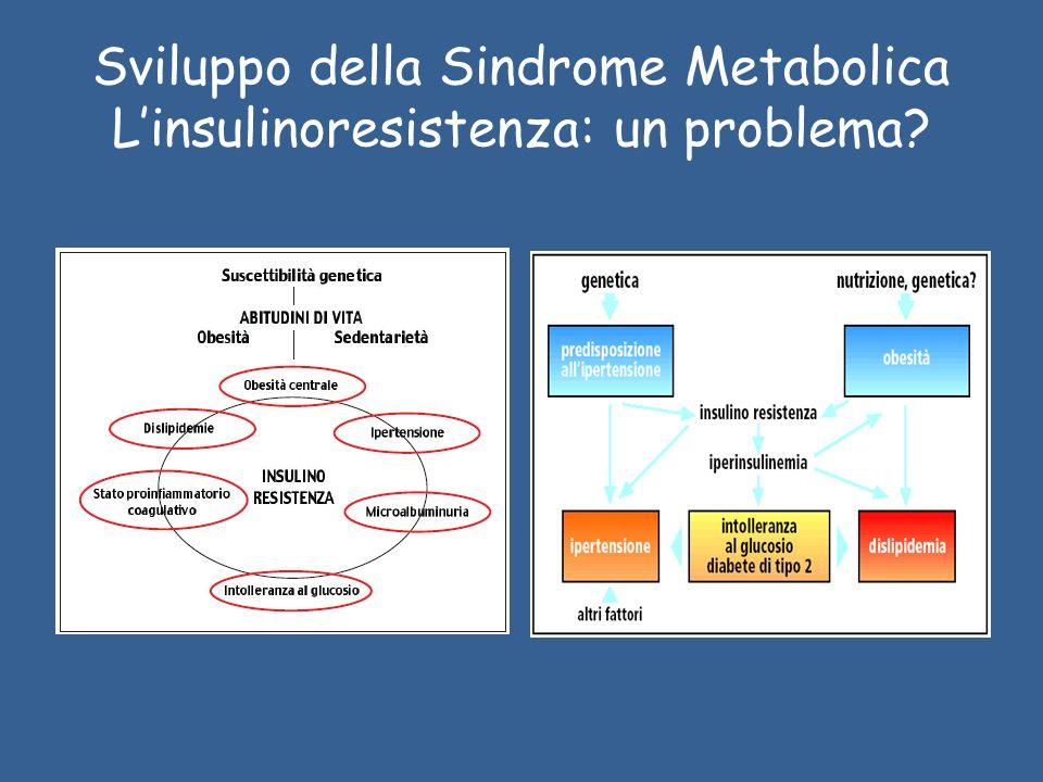 Sviluppo della Sindrome Metabolica L'insulinoresistenza: un problema