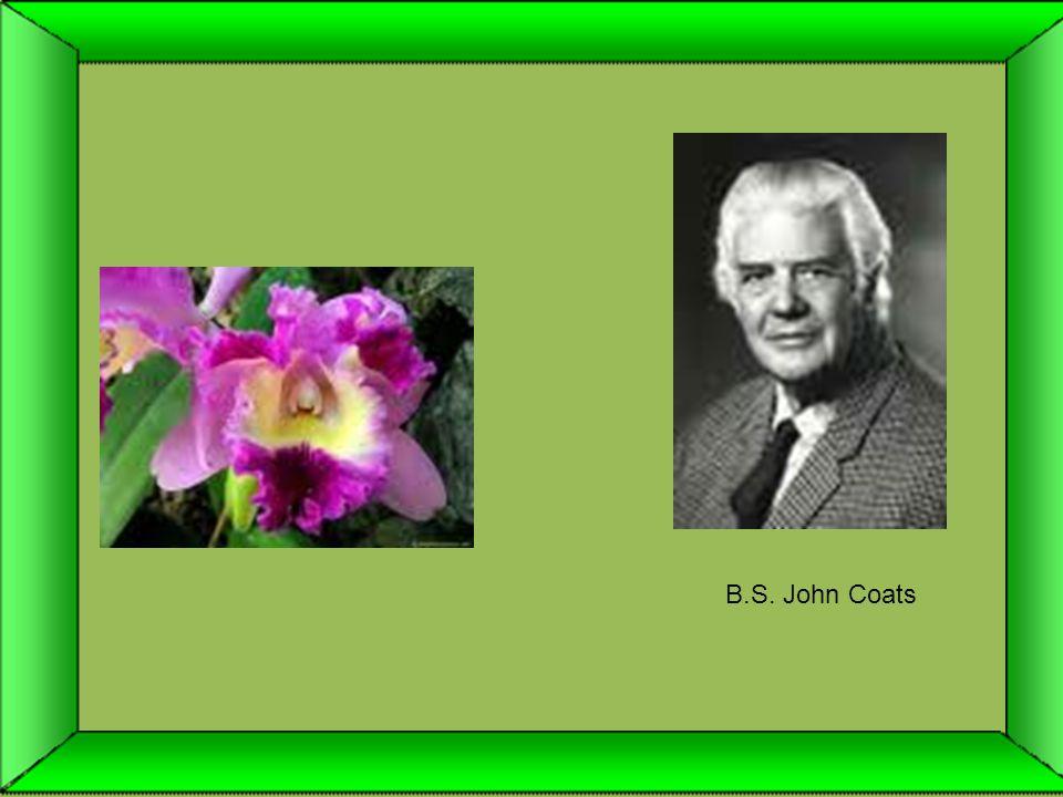 B.S. John Coats
