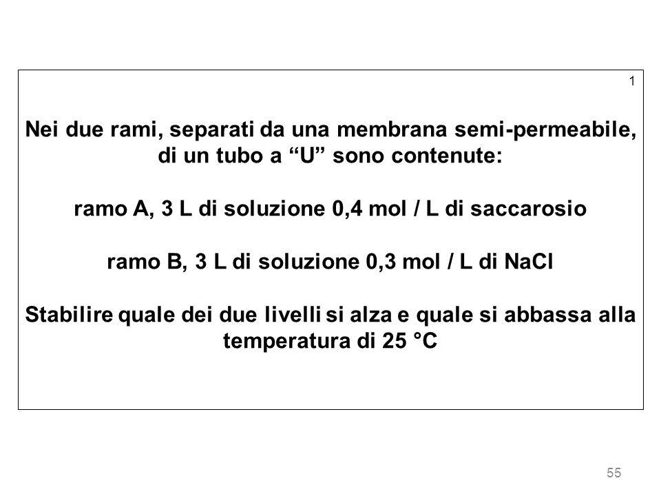 ramo A, 3 L di soluzione 0,4 mol / L di saccarosio