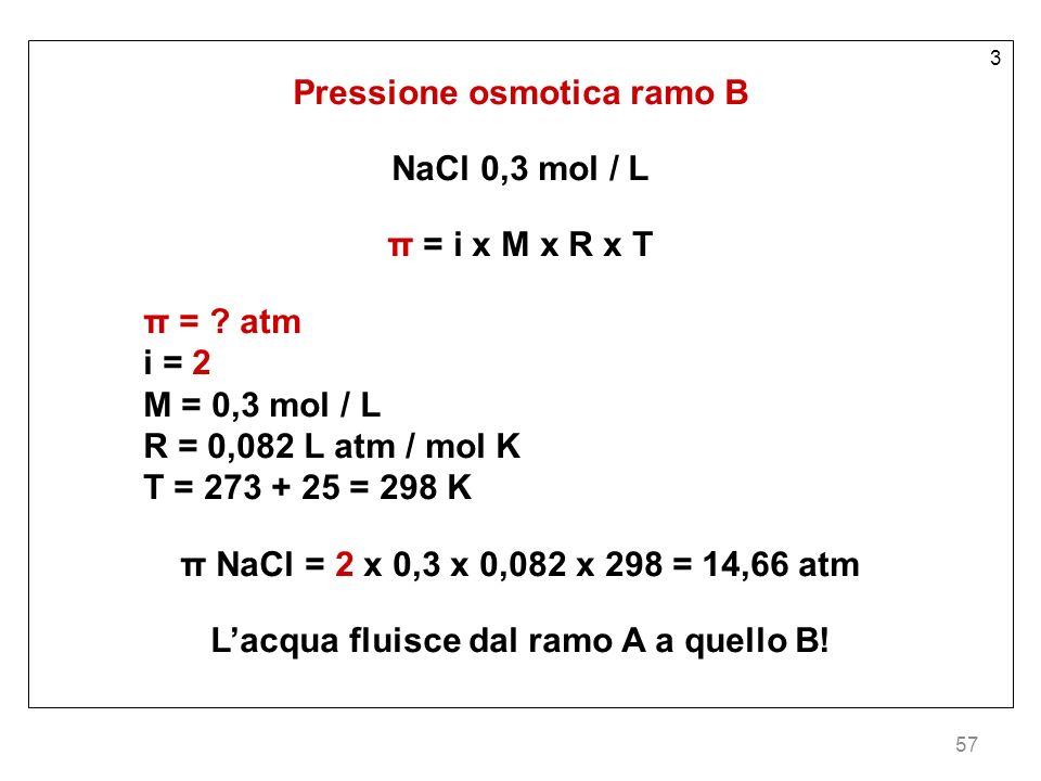 Pressione osmotica ramo B L'acqua fluisce dal ramo A a quello B!