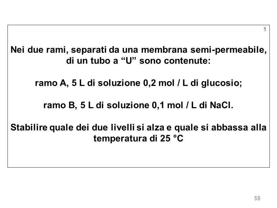 ramo A, 5 L di soluzione 0,2 mol / L di glucosio;