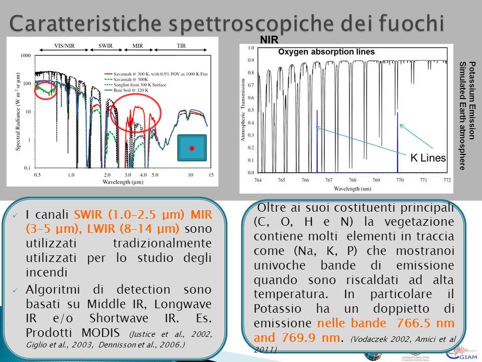 Caratteristiche spettroscopiche dei fuochi