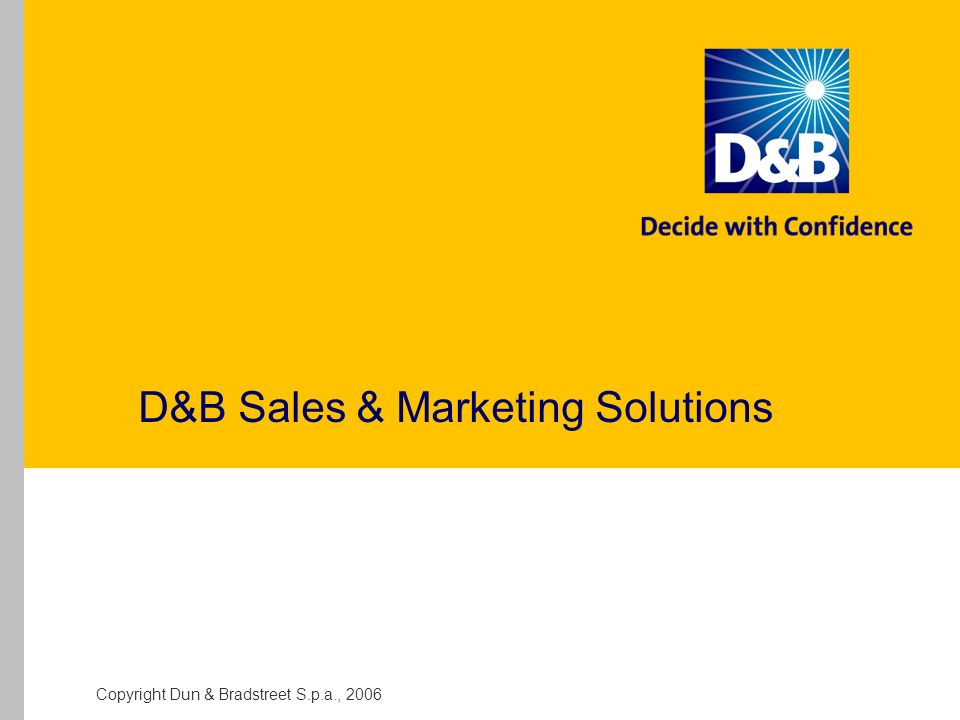 D&B Sales & Marketing Solutions
