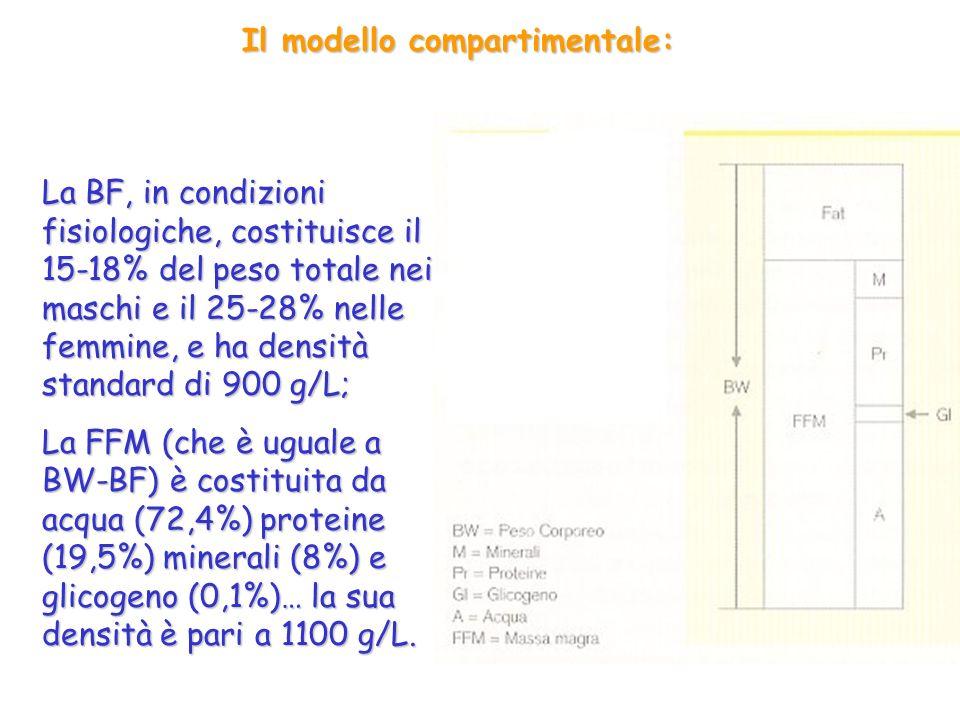 Il modello compartimentale: