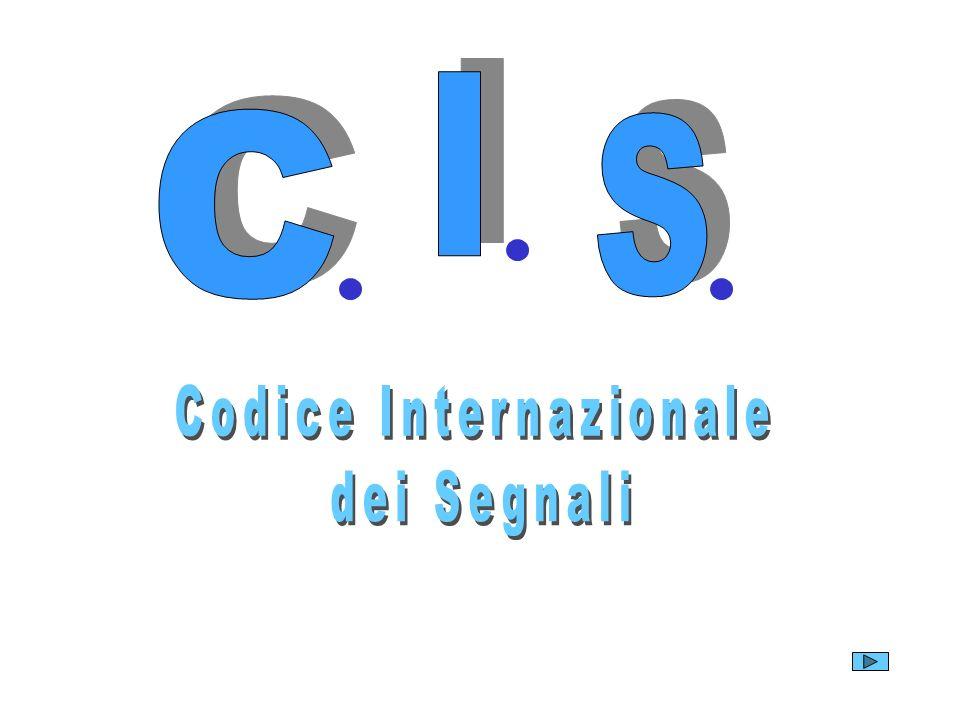 Codice Internazionale
