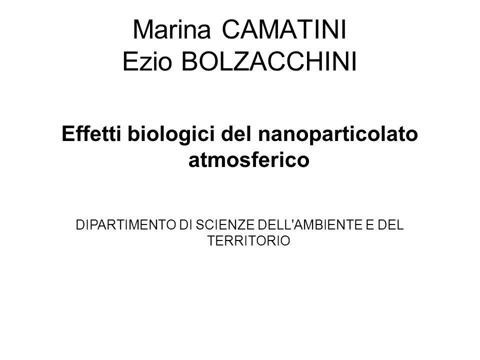 Marina CAMATINI Ezio BOLZACCHINI