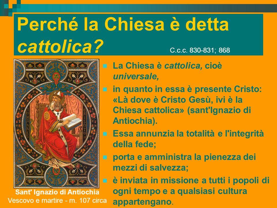 Perché la Chiesa è detta cattolica C.c.c. 830-831; 868
