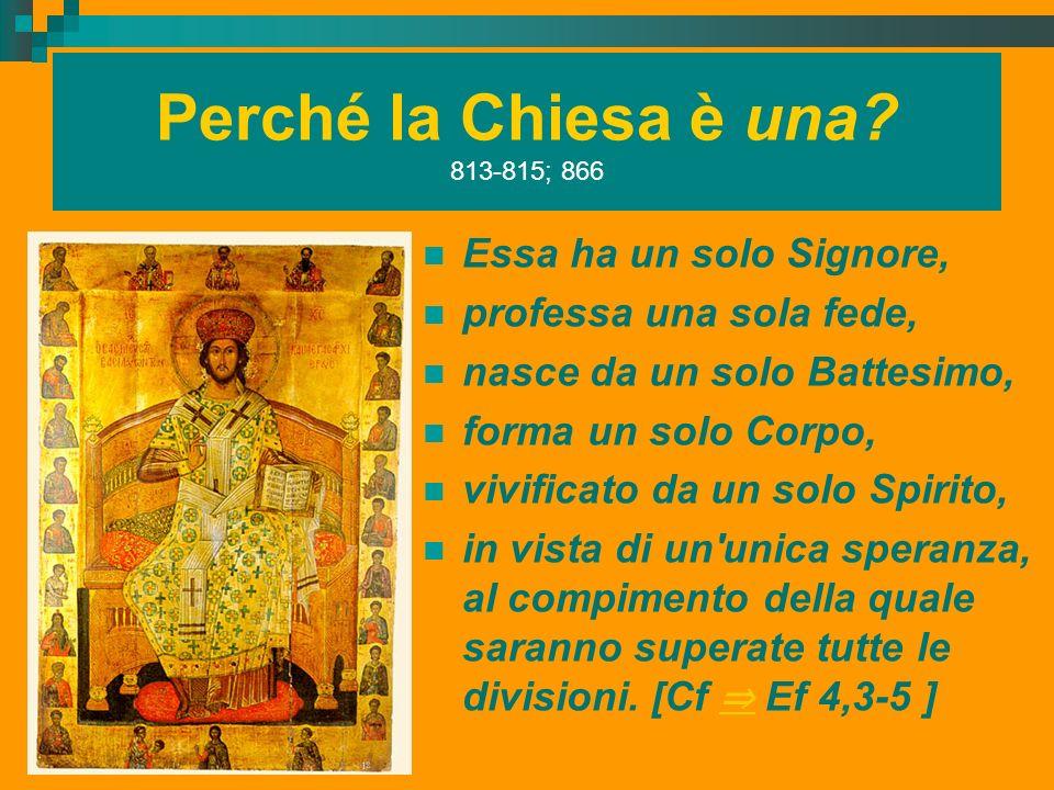 Perché la Chiesa è una 813-815; 866