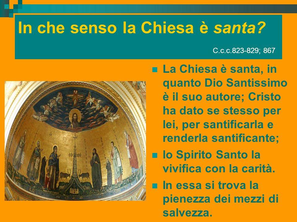 In che senso la Chiesa è santa C.c.c.823-829; 867