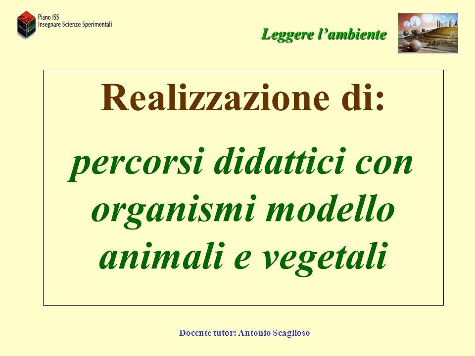 percorsi didattici con organismi modello animali e vegetali