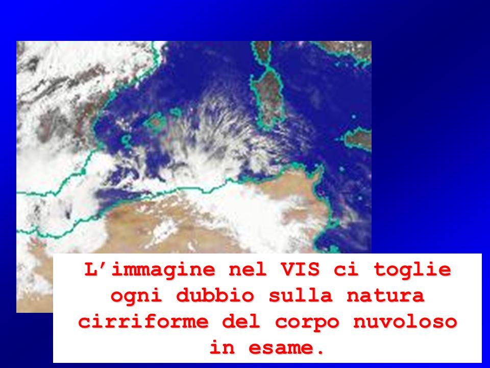 L'immagine nel VIS ci toglie ogni dubbio sulla natura cirriforme del corpo nuvoloso in esame.
