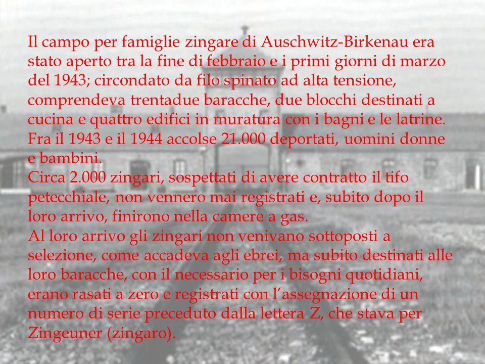 Il campo per famiglie zingare di Auschwitz-Birkenau era stato aperto tra la fine di febbraio e i primi giorni di marzo del 1943; circondato da filo spinato ad alta tensione, comprendeva trentadue baracche, due blocchi destinati a cucina e quattro edifici in muratura con i bagni e le latrine. Fra il 1943 e il 1944 accolse 21.000 deportati, uomini donne e bambini.