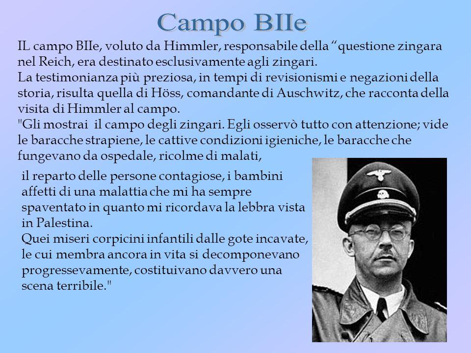 Campo BIIe IL campo BIIe, voluto da Himmler, responsabile della questione zingara nel Reich, era destinato esclusivamente agli zingari.