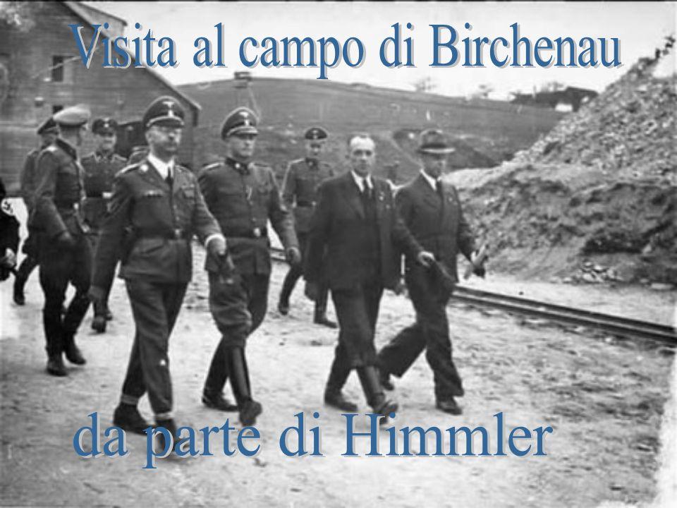 Visita al campo di Birchenau
