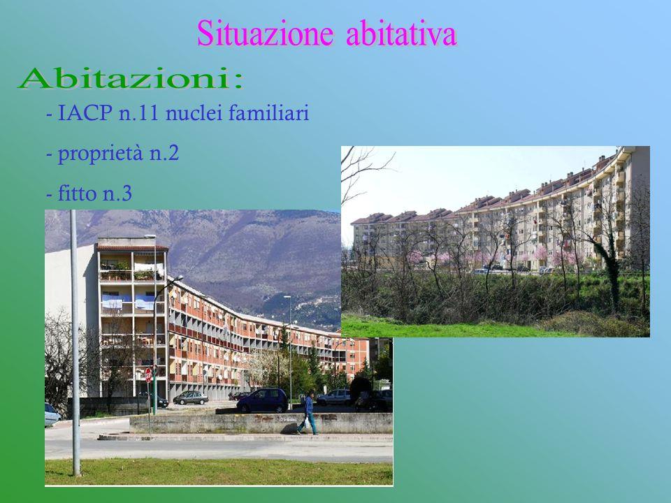Situazione abitativa Abitazioni: IACP n.11 nuclei familiari