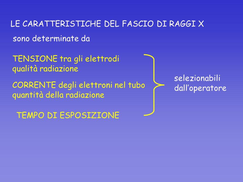 LE CARATTERISTICHE DEL FASCIO DI RAGGI X