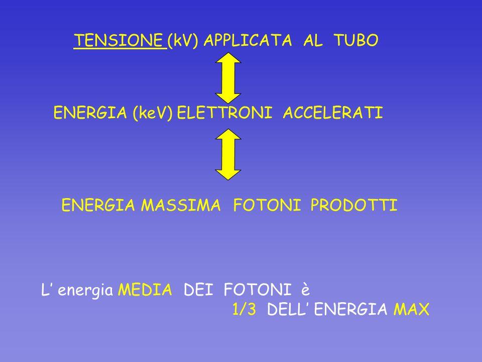 TENSIONE (kV) APPLICATA AL TUBO