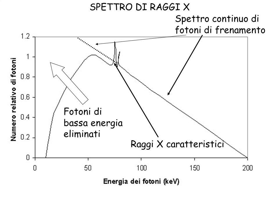 SPETTRO DI RAGGI X Spettro continuo di. fotoni di frenamento. Fotoni di. bassa energia. eliminati.