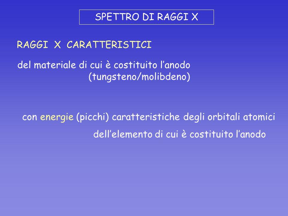 SPETTRO DI RAGGI X RAGGI X CARATTERISTICI. del materiale di cui è costituito l'anodo. (tungsteno/molibdeno)
