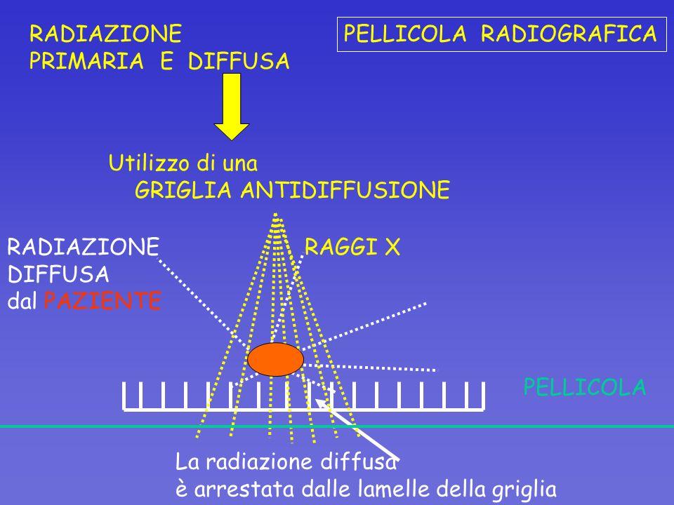 RADIAZIONE PRIMARIA E DIFFUSA. PELLICOLA RADIOGRAFICA. Utilizzo di una. GRIGLIA ANTIDIFFUSIONE.