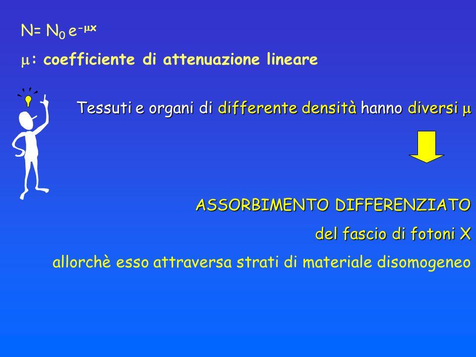 N= N0 e-x: coefficiente di attenuazione lineare. Tessuti e organi di differente densità hanno diversi 