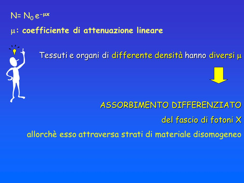 N= N0 e-x : coefficiente di attenuazione lineare. Tessuti e organi di differente densità hanno diversi 