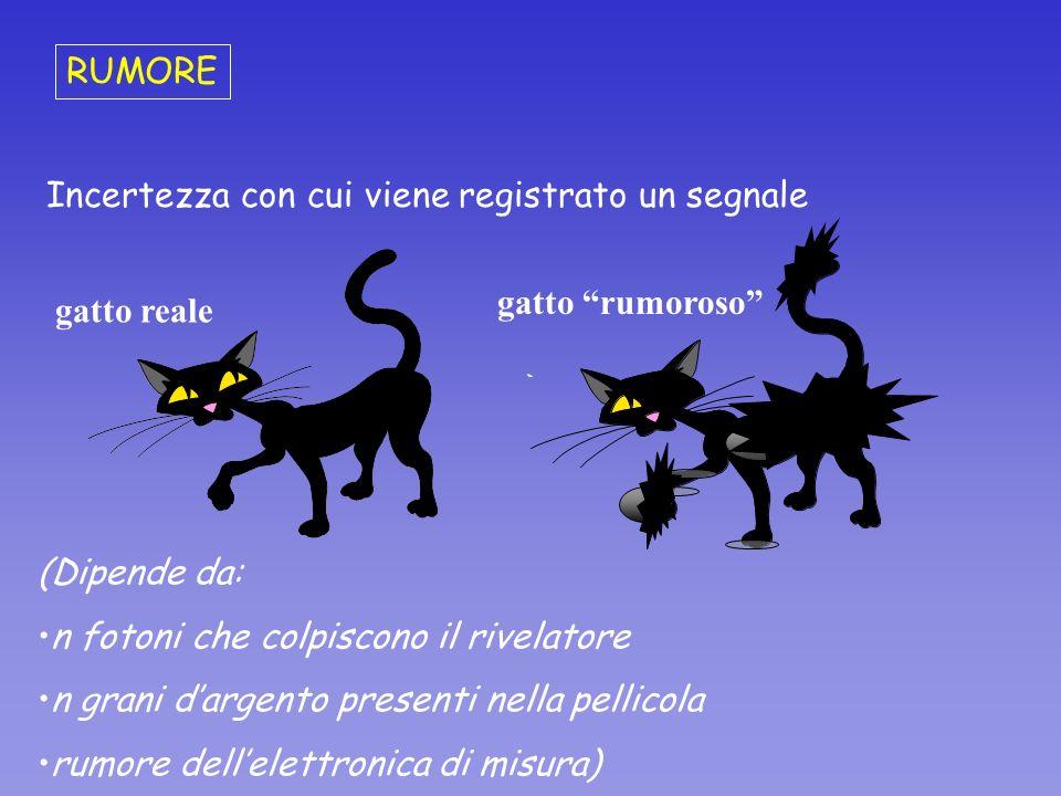 RUMOREIncertezza con cui viene registrato un segnale. gatto rumoroso gatto reale. (Dipende da: n fotoni che colpiscono il rivelatore.