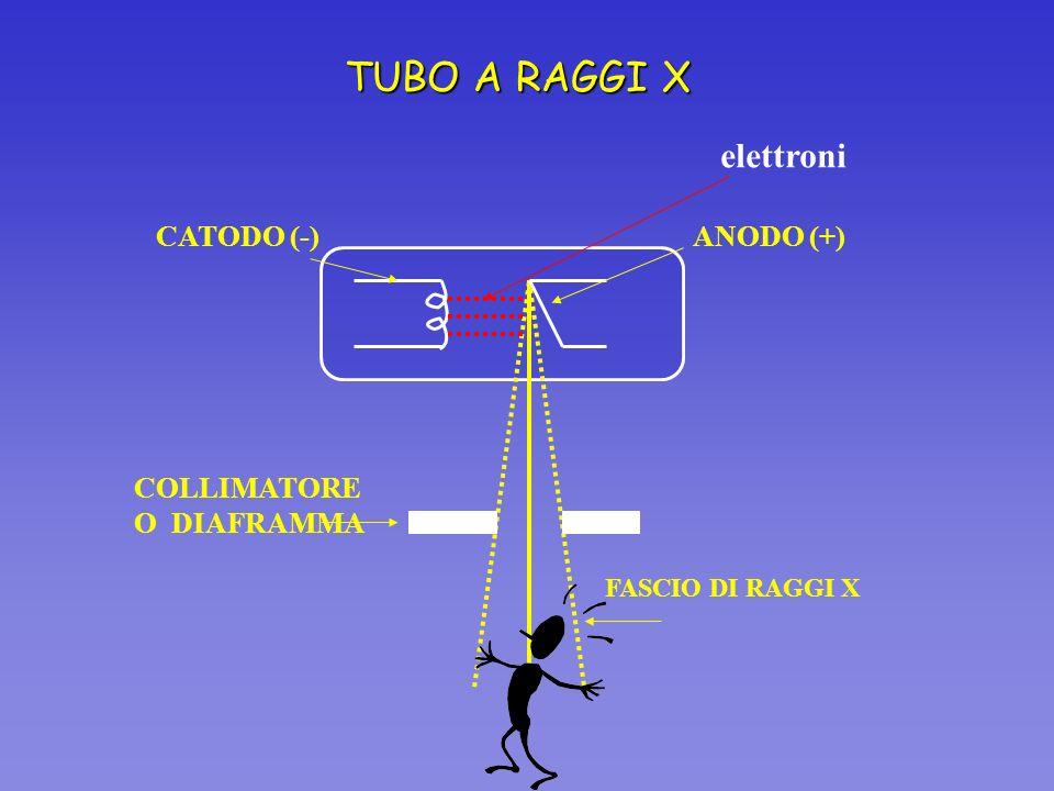 TUBO A RAGGI X elettroni CATODO (-) ANODO (+) COLLIMATORE O DIAFRAMMA