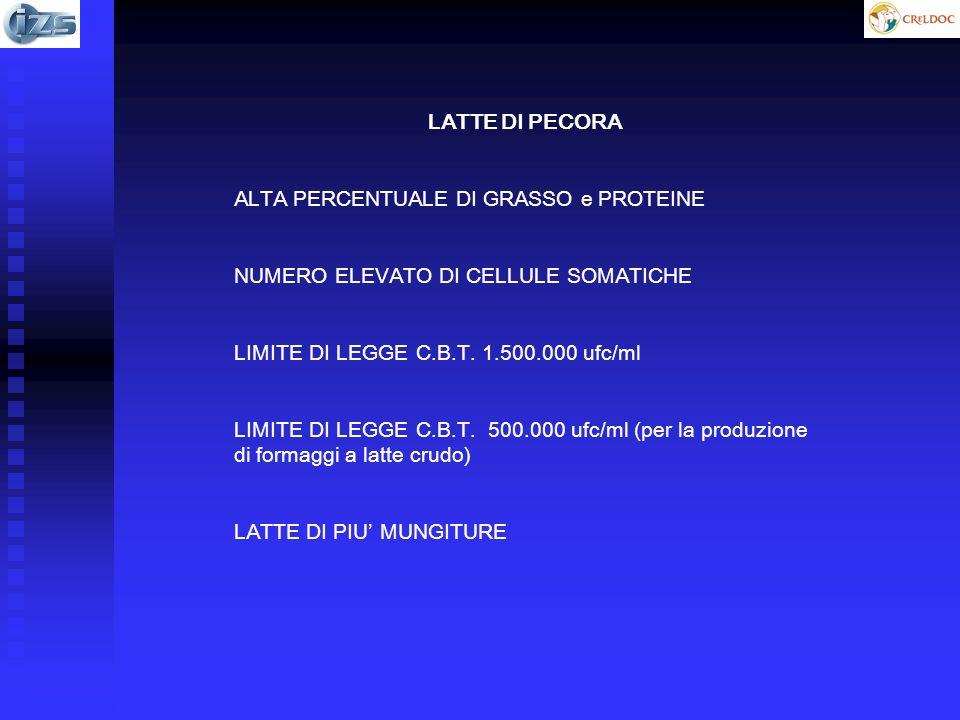 LATTE DI PECORA ALTA PERCENTUALE DI GRASSO e PROTEINE. NUMERO ELEVATO DI CELLULE SOMATICHE. LIMITE DI LEGGE C.B.T. 1.500.000 ufc/ml.