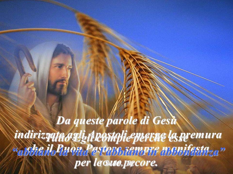 Da queste parole di Gesù indirizzate agli Apostoli emerge la premura
