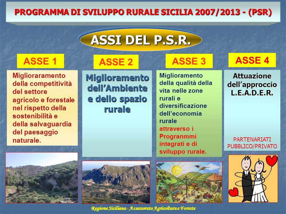 ASSI DEL P.S.R. ASSE 1 ASSE 2 ASSE 3 ASSE 4