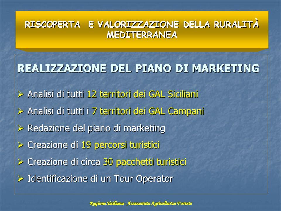 REALIZZAZIONE DEL PIANO DI MARKETING