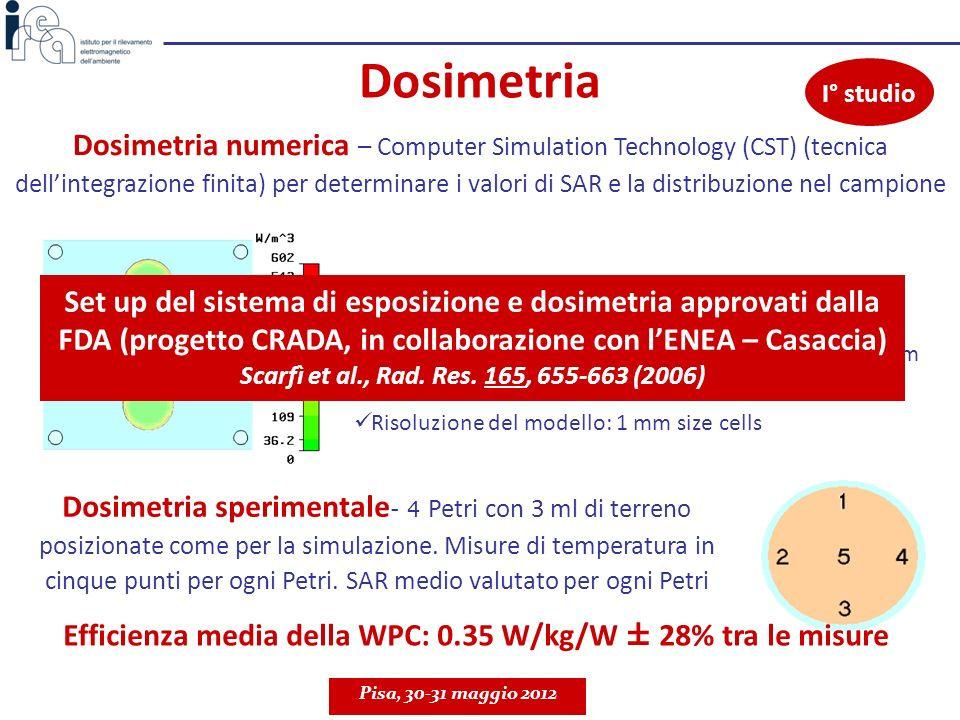 Efficienza media della WPC: 0.35 W/kg/W ± 28% tra le misure