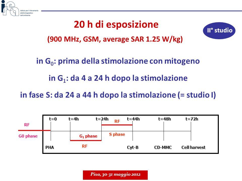 20 h di esposizione in G0: prima della stimolazione con mitogeno