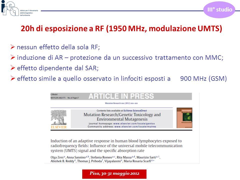20h di esposizione a RF (1950 MHz, modulazione UMTS)