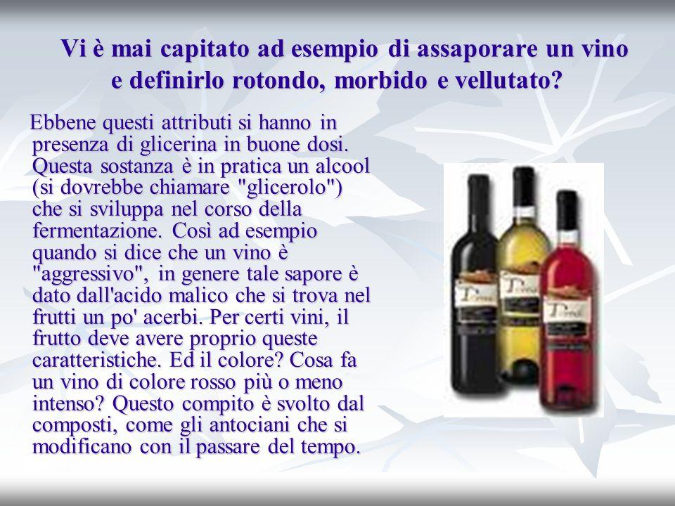 Vi è mai capitato ad esempio di assaporare un vino e definirlo rotondo, morbido e vellutato