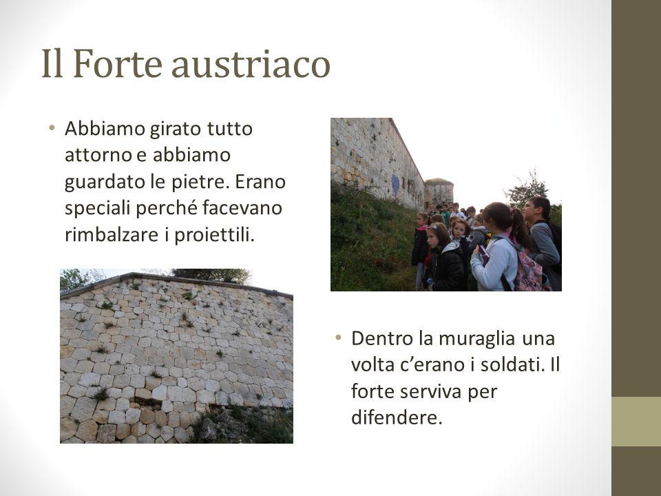 Il Forte austriaco Abbiamo girato tutto attorno e abbiamo guardato le pietre. Erano speciali perché facevano rimbalzare i proiettili.