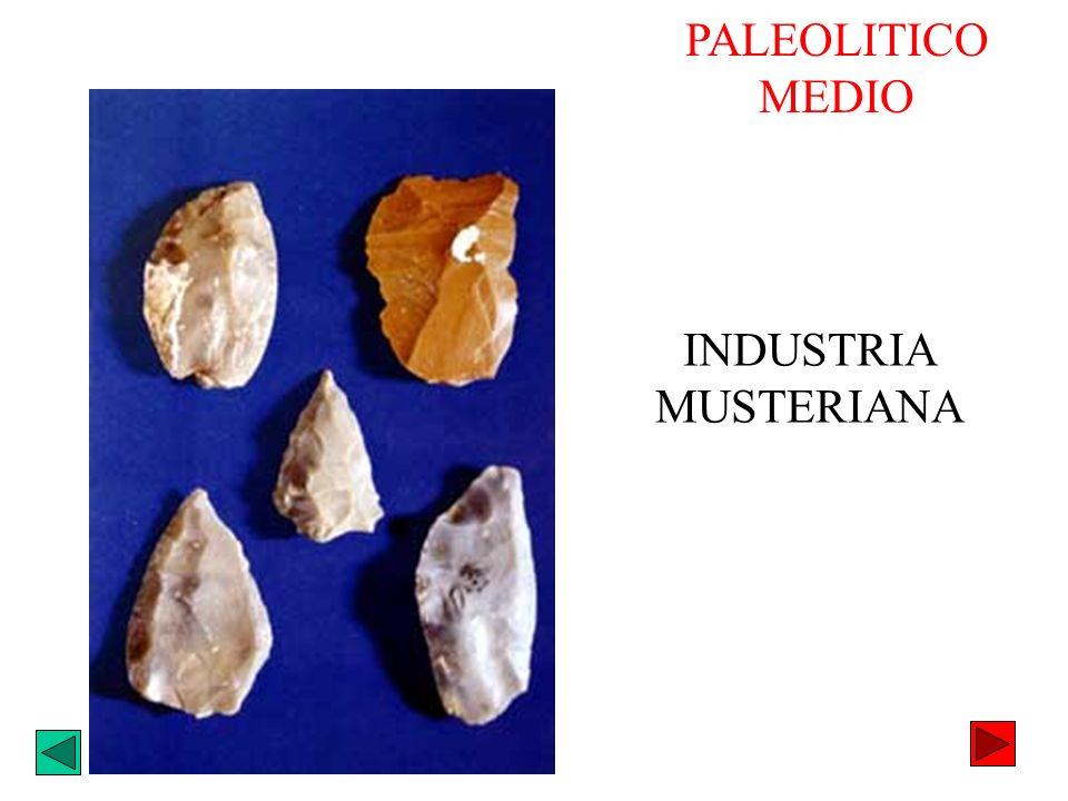 PALEOLITICO MEDIO INDUSTRIA MUSTERIANA