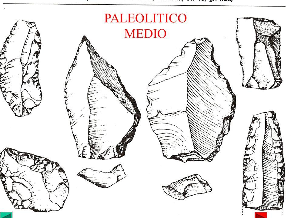 PALEOLITICO MEDIO