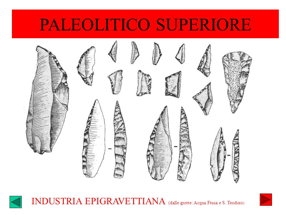PALEOLITICO SUPERIORE